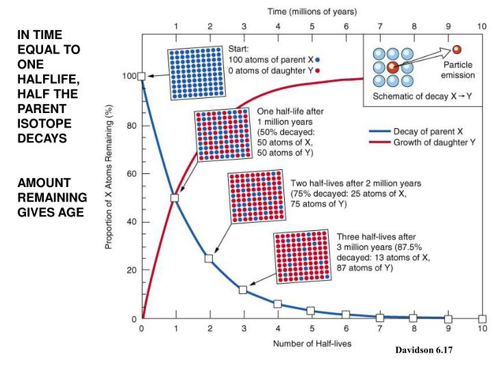 IN TIME EQUAL TO ONE HALFLIFE, HALF THE PARENT ISOTOPE DECAYS
