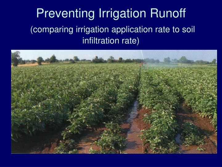 Preventing Irrigation Runoff