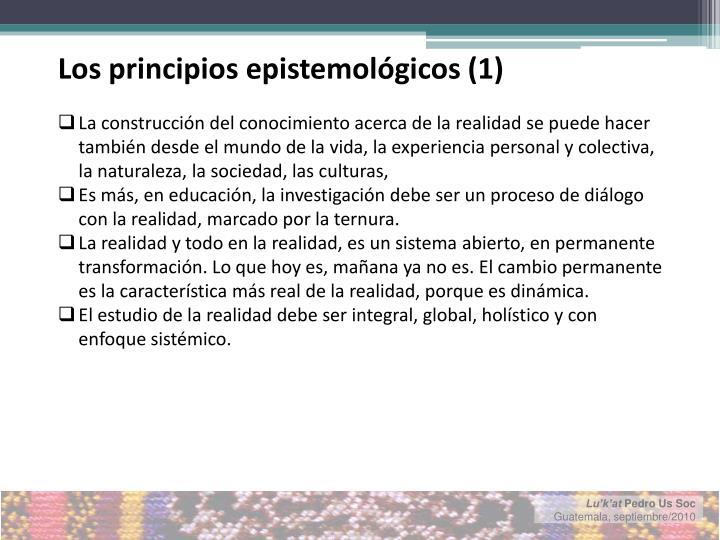 Los principios epistemológicos (1)