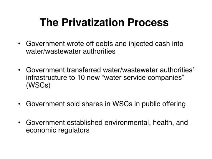 The Privatization Process