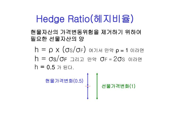 Hedge Ratio(