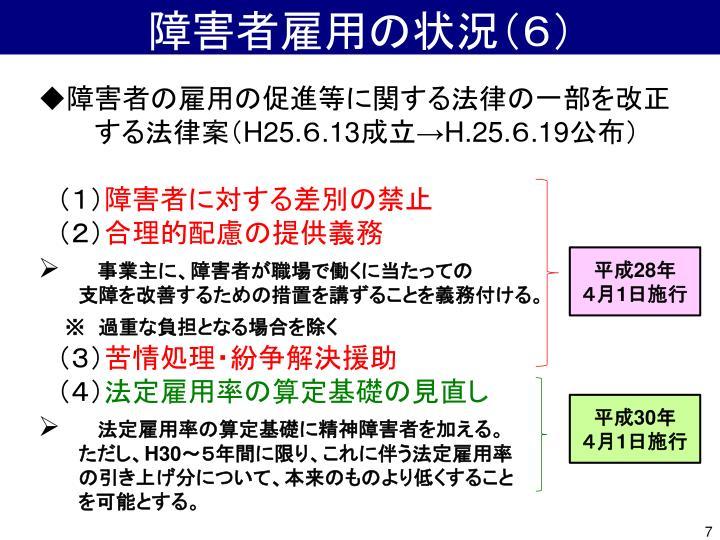 障害者雇用の状況(6)