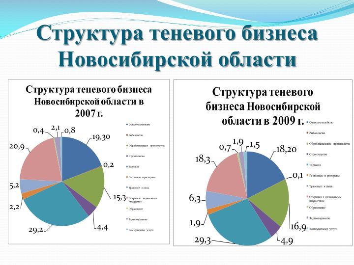 Структура теневого бизнеса Новосибирской области