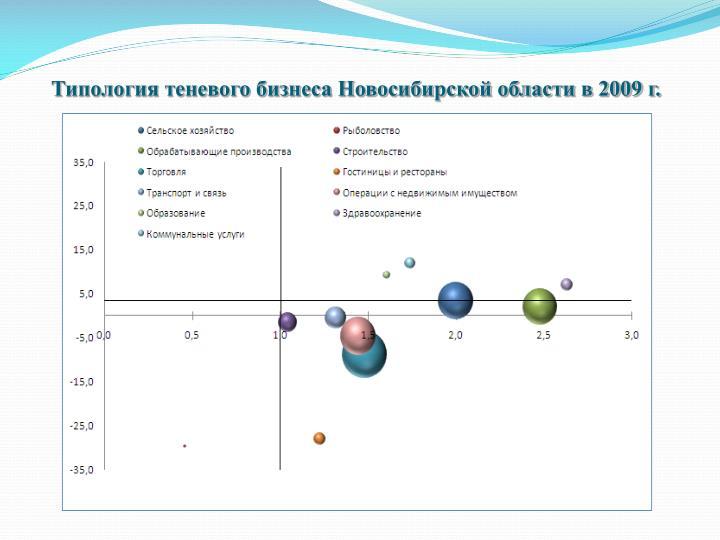 Типология теневого бизнеса Новосибирской области в 2009 г.