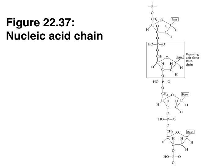 Figure 22.37:
