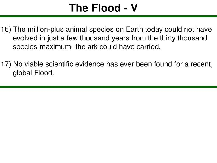 The Flood - V