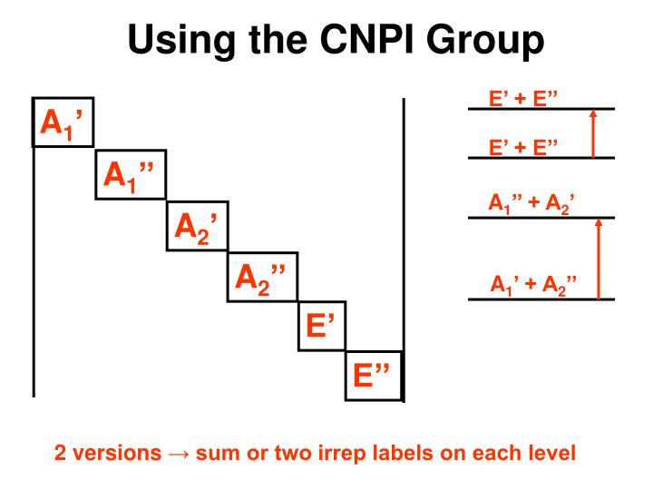 Using the CNPI Group