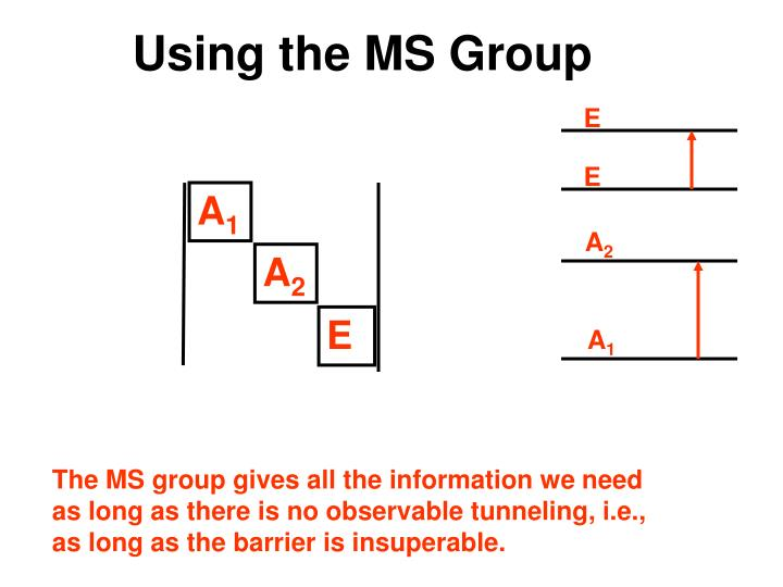 Using the MS Group