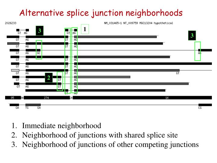 Alternative splice junction neighborhoods