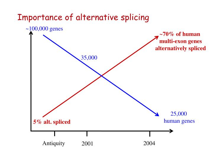 Importance of alternative splicing
