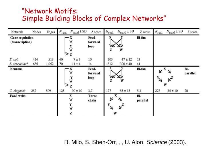 """""""Network Motifs:"""