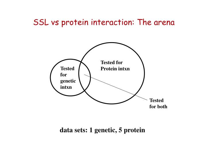 SSL vs protein interaction: The arena