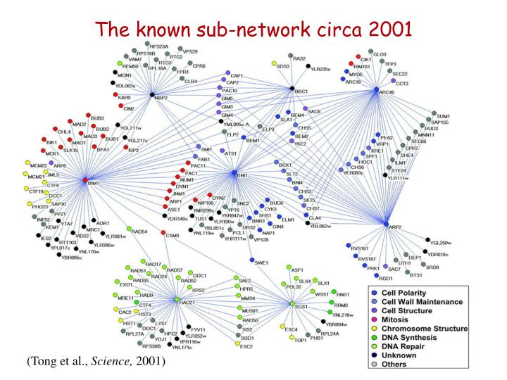 The known sub-network circa 2001