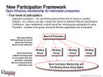 new participation framework