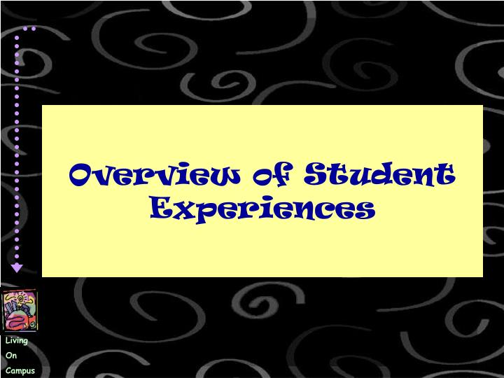 Overview of student experiences