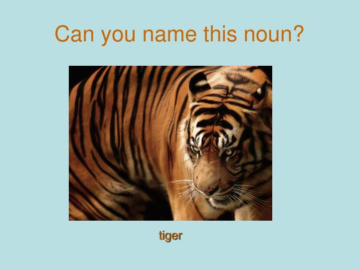 Can you name this noun?