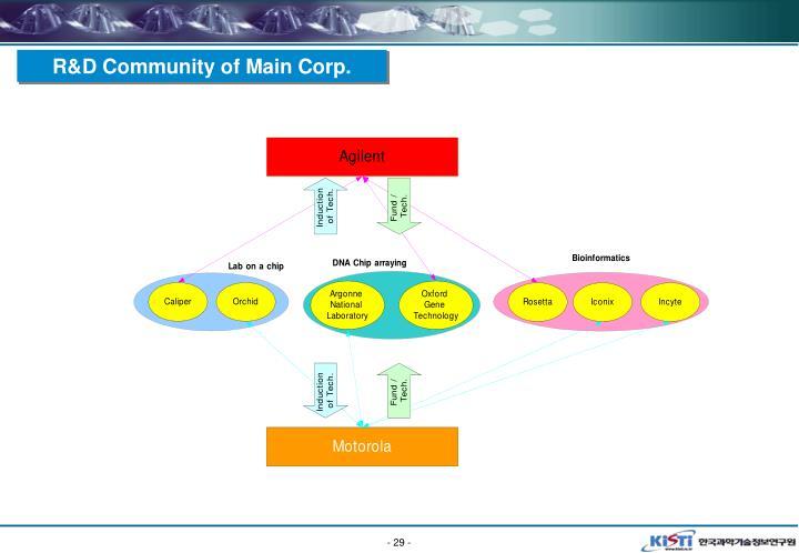 R&D Community of Main Corp.