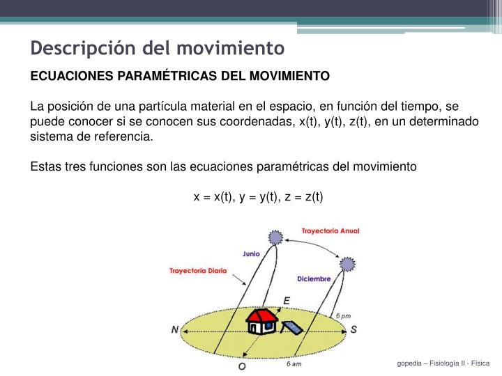 Descripción del movimiento