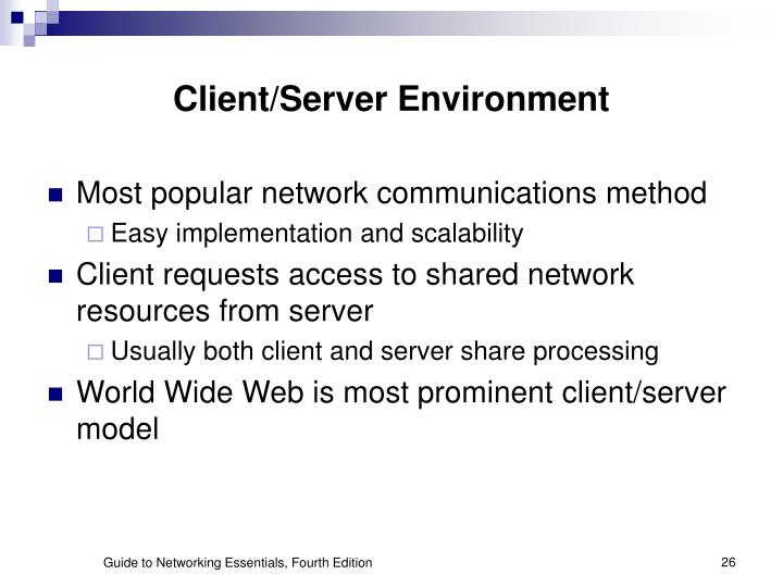 Client/Server Environment