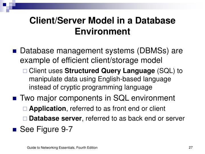 Client/Server Model in a Database Environment