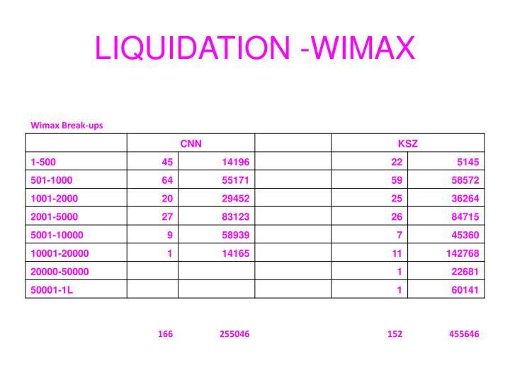LIQUIDATION -WIMAX