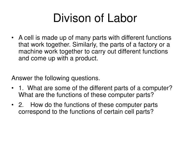 Divison of Labor