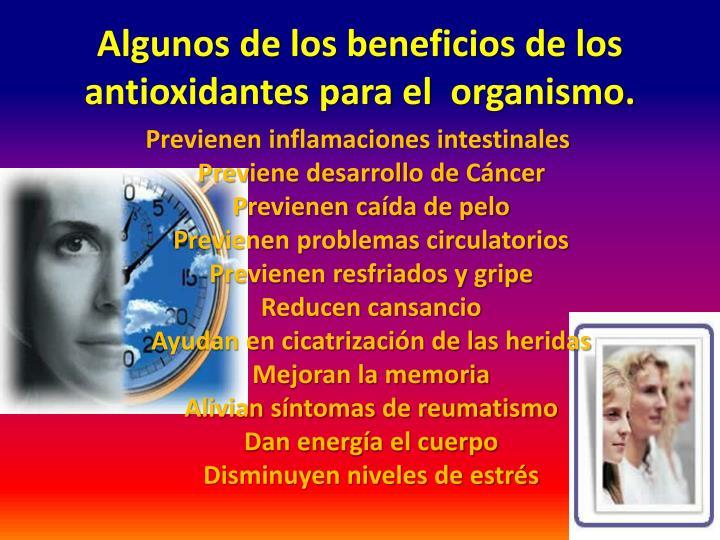 Algunos de los beneficios de los antioxidantes para el organismo.