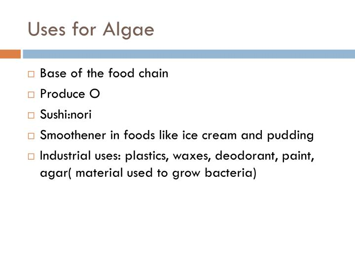 Uses for Algae