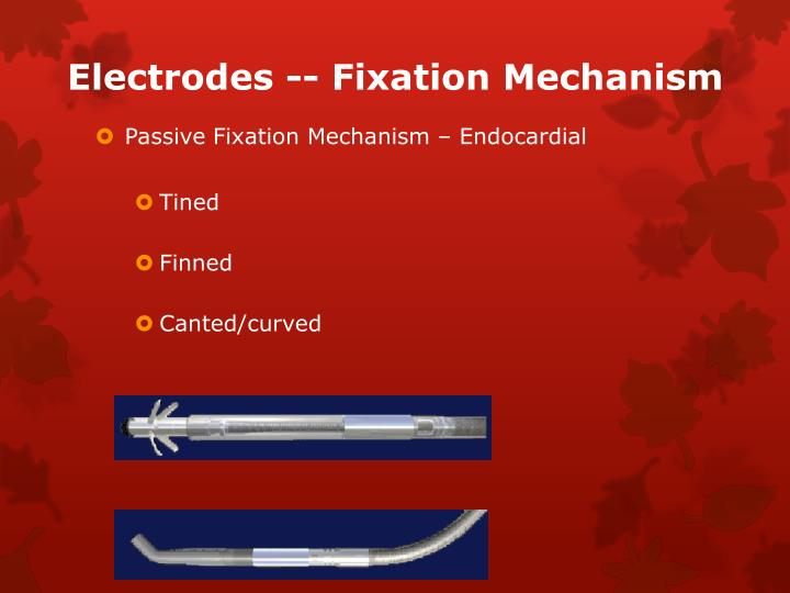 Electrodes -- Fixation Mechanism