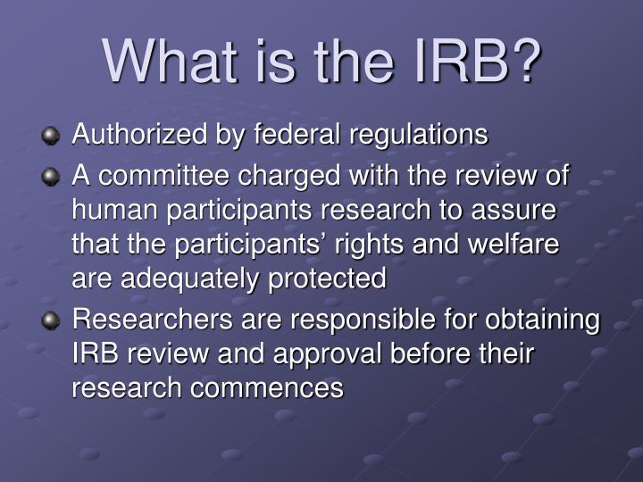 What is the IRB?