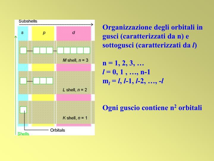 Organizzazione degli orbitali in gusci (caratterizzati da n) e sottogusci (caratterizzati da
