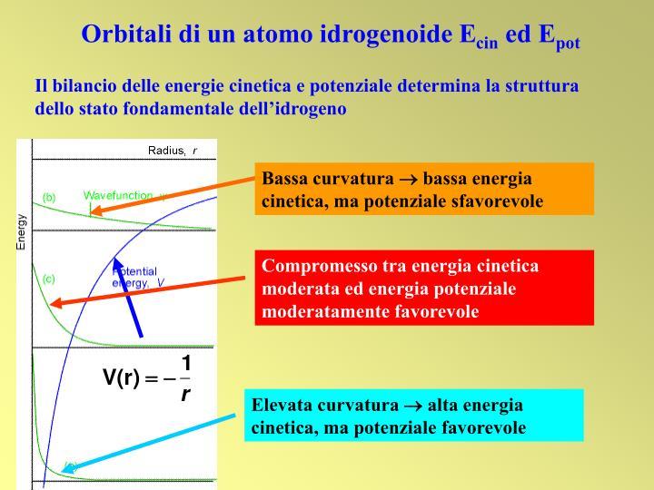 Orbitali di un atomo idrogenoide E