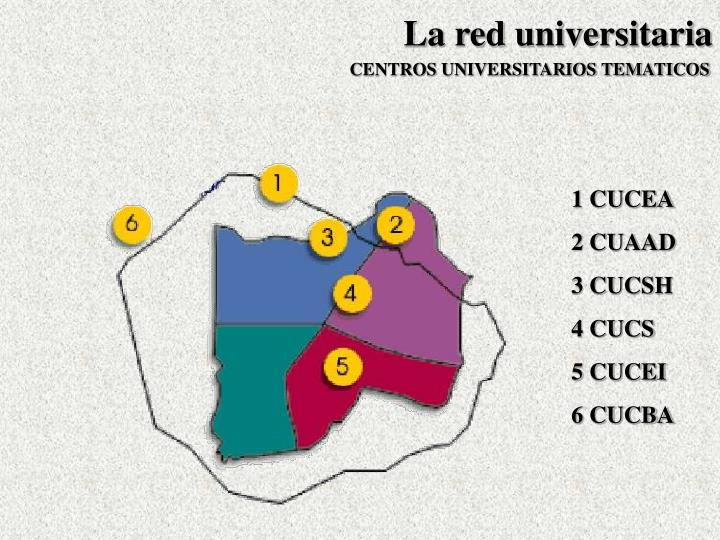 La red universitaria
