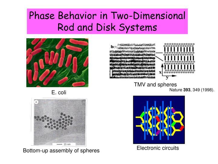 Phase Behavior in Two-Dimensional