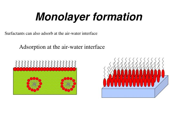 Monolayer formation