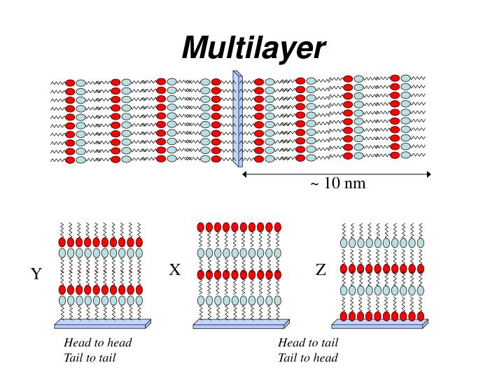 Multilayer