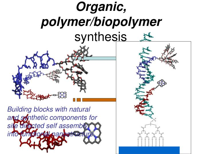Organic, polymer/biopolymer