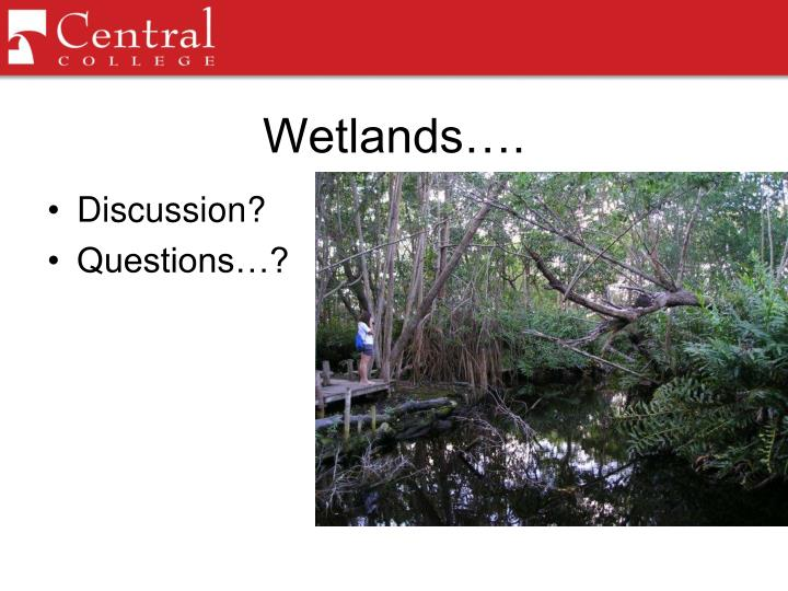 Wetlands….