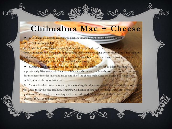 Chihuahua Mac + Cheese