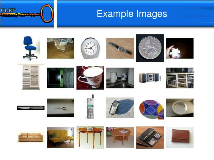 Example Images