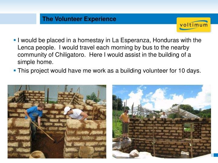 The Volunteer Experience