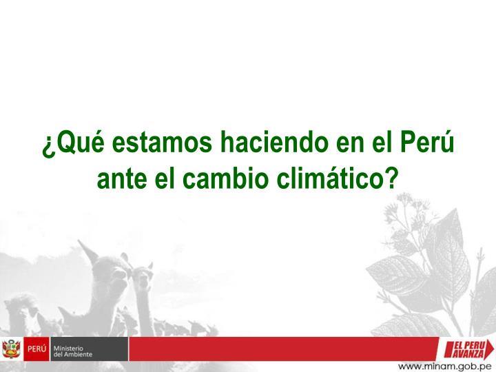 ¿Qué estamos haciendo en el Perú