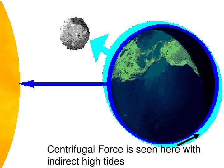 Centrifugal Force is seen here with indirect high tides
