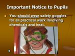 important notice to pupils10