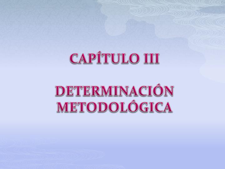 CAPÍTULO III