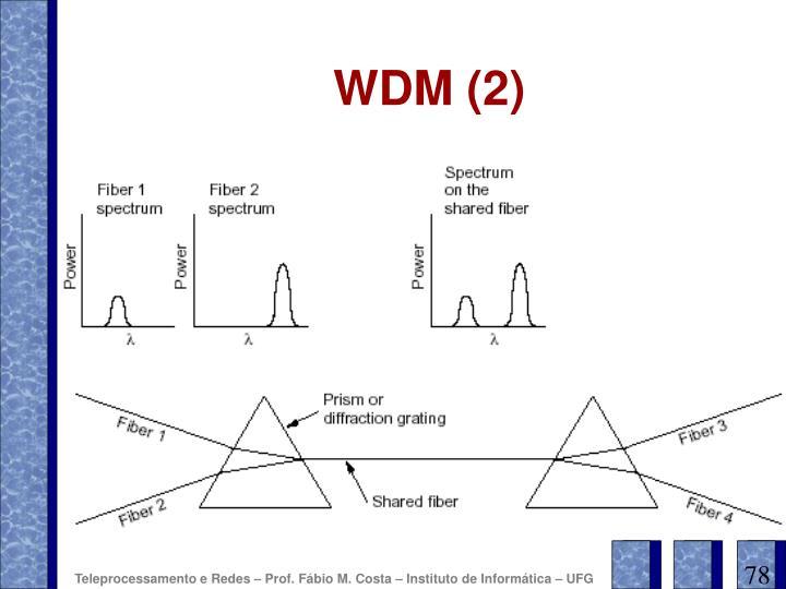 WDM (2)