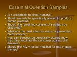 essential question samples