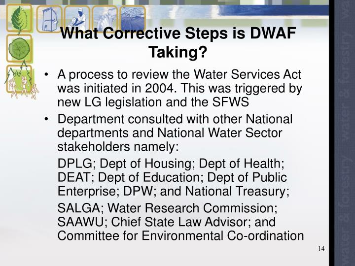 What Corrective Steps is DWAF Taking?