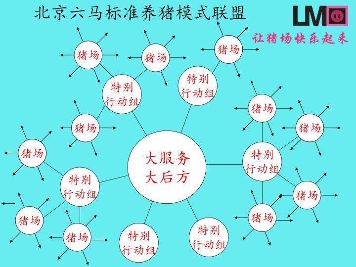 北京六马标准养猪模式联盟