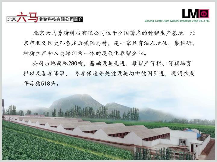北京六马养猪科技有限公司位于全国著名的种猪生产基地-北京市顺义区大孙各庄后镇陆马村,是一家具有法人地位,集科研、种猪生产和人员培训为一体的现代化养猪企业。